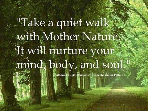 Take a Quiet Walk